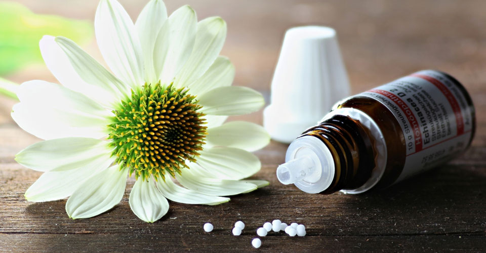 Homeopathic Pills Echinacea